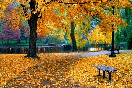 Herbst-e1546601225594.jpg